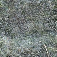 seamless grass frozen