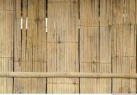 Wood 0016