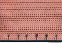 Tiles Roof 0236