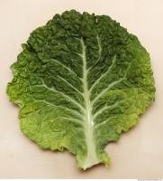 Photo Texture of Leaf Cabbage 0001