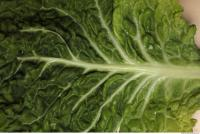 Photo Texture of Leaf Cabbage 0002