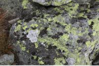 free photo texture of rock mossy