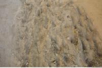 Photo Texture of Sand 0006