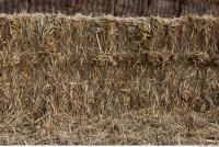 photo texture of straw 0003