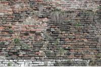 free photo texture of wall brick overgrown