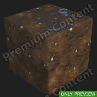 PBR substance preview forest ground wet 0001