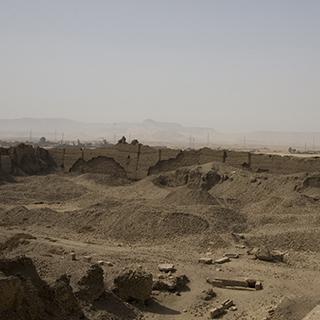 Egypt Dendera Landspace